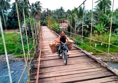 Abang Hend, Pemanjat Kelapa Dari Nagari Sungai Limau